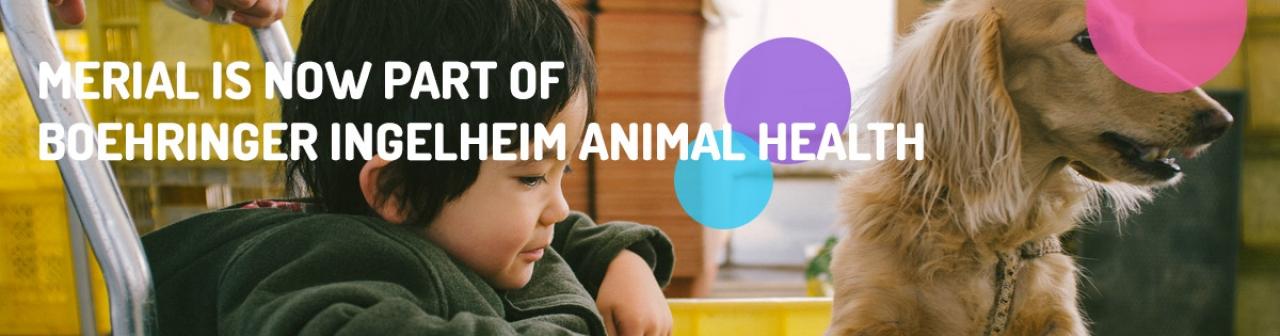 Header Animal Health